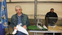 Dünya'da eşi olmayan 100 bin TL'lik güvercinler fiyatıyla şaşırtıyor