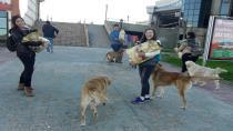 AHBAP Kocaeli Sokak Ahbaplarını Unutmadı