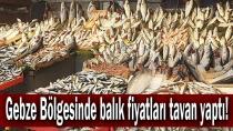 Gebze Bölgesinde balık fiyatları tavan yaptı!