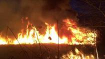 Körfez'de orman yangını